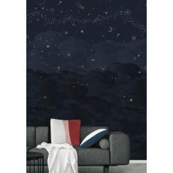 panoramique Nuit étoilée