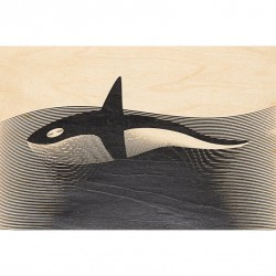 CARTE EN BOIS Orca