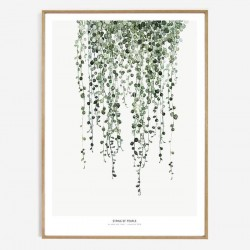 AFFICHE STRING OF PEARLS